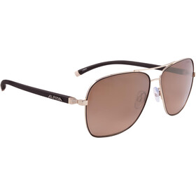 Alpina Limio Gafas, gold-black